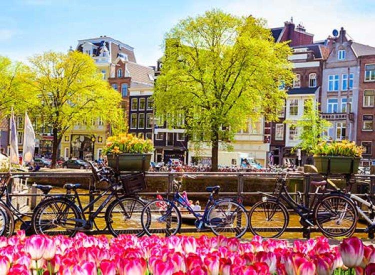 Black Friday Amsterdam