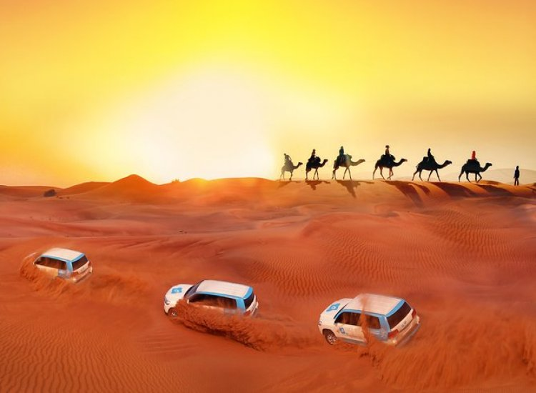 Premium Red Dunes, <br> Camel Safari, BBQ